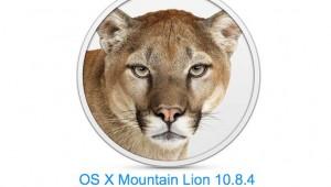 big-mountain-lion