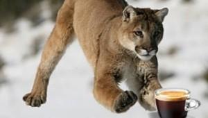 ML coffee